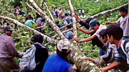 170224070548-cnnee-cafe-intvw-diputada-jimena-costa-los-cocaleros-bolivia-protestas-00035728-full-169