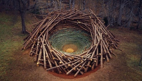Clemson Clay Nest -- South Carolina's Botanical Garden, 2005